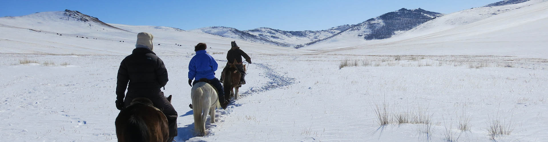 MONGOLIA - Winter horse riding tour in the Orkhon Valley, Bayan Gobi ...