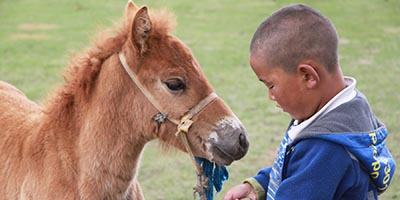 Nomadic Life Tour for families with children in Mongolia